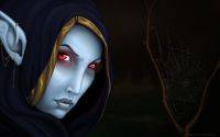 Traxex Drow Ranger spiderweb DOTA hero widescreen wallpaper