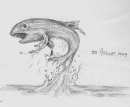 fish splash  art pencil sketch drawing
